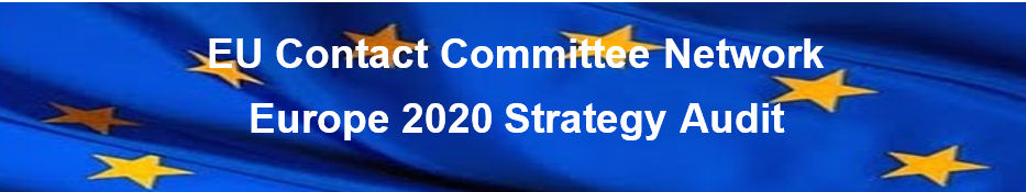 Europe 2020 Strategy Audit Network